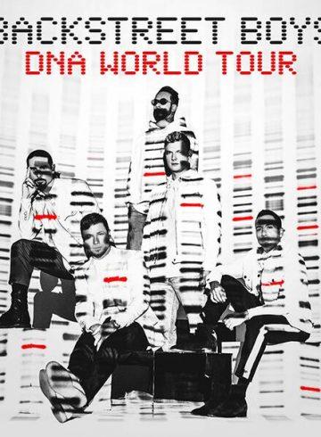 Excursão Backstreet Boys DNA World Tour Ribeirão Preto e Região